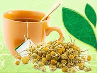 Curso Plantas Medicinais