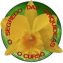 O Segredo das Orquídeas - O Curso