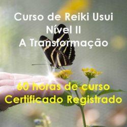 Curso de Reiki Usui Nível II - A Transformação